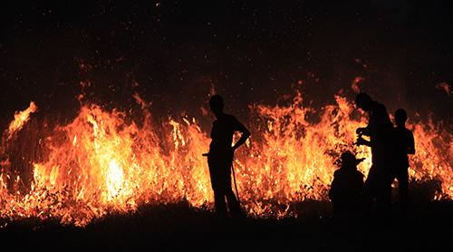 bush-fire-500px